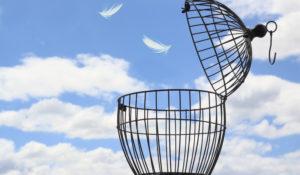 La libertà e i suoi limiti